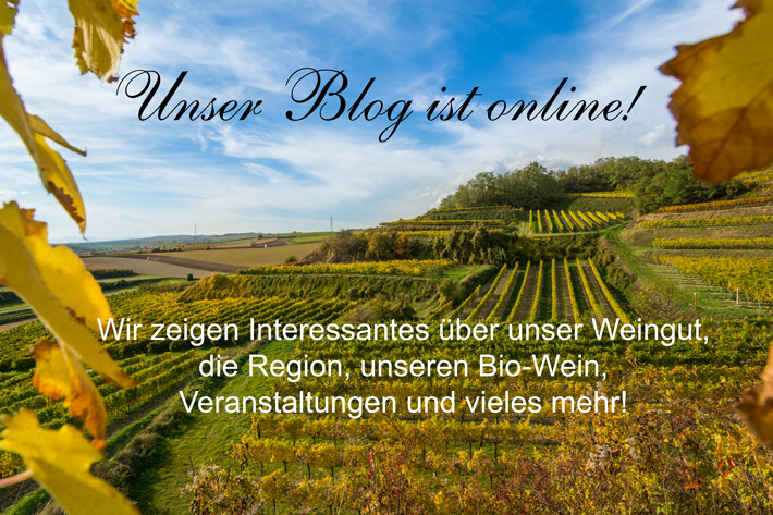 welcome_blog56d41e24b0de3